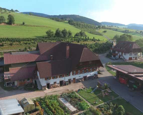 downloadable_schwendemann-thomas-dji_0001-25 Oberharmersbach